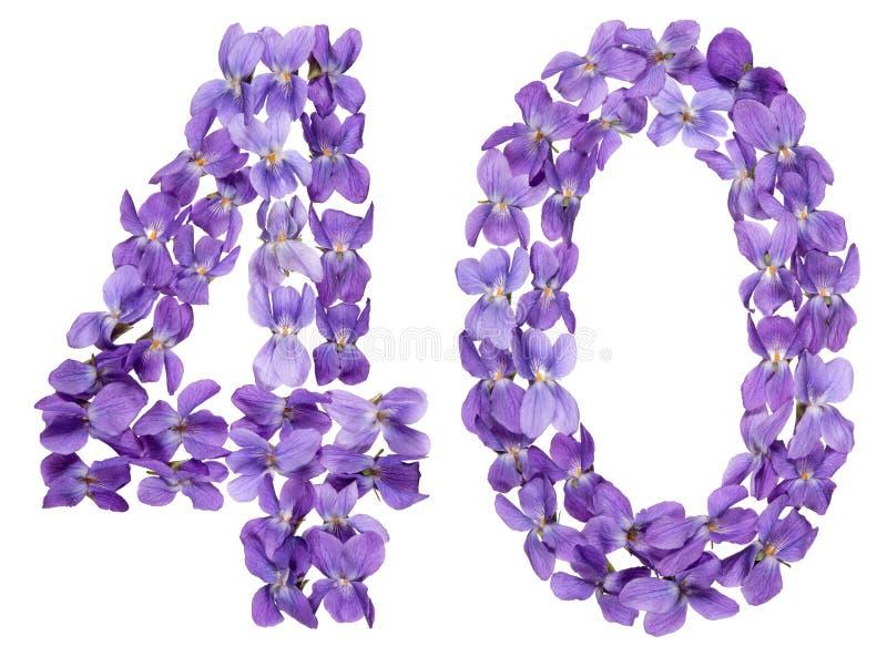Numeral árabe 40, quarenta, das flores da viola, isoladas no whi fotografia de stock
