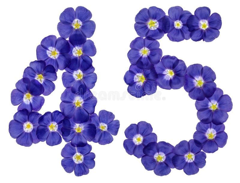 Numeral árabe 45, quarenta e cinco, das flores azuis do linho, isolat imagem de stock royalty free
