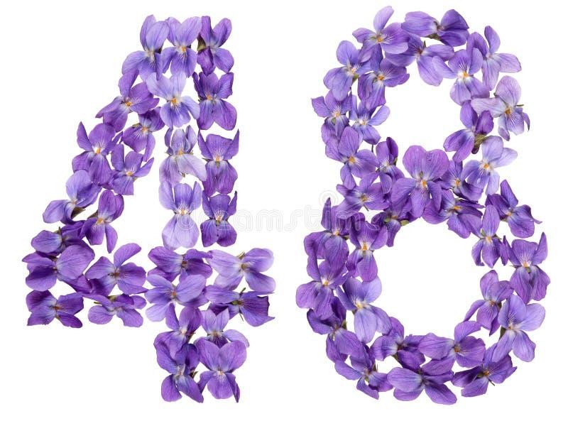 Numeral árabe 48, quarenta e oito, das flores da viola, isoladas fotos de stock royalty free