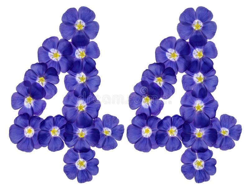 Numeral árabe 44, quarenta e quatro, das flores azuis do linho, isolat imagens de stock royalty free