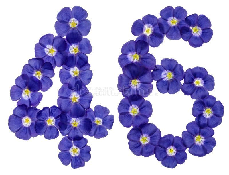 Numeral árabe 46, quarenta e seis, das flores azuis do linho, isolado fotografia de stock royalty free