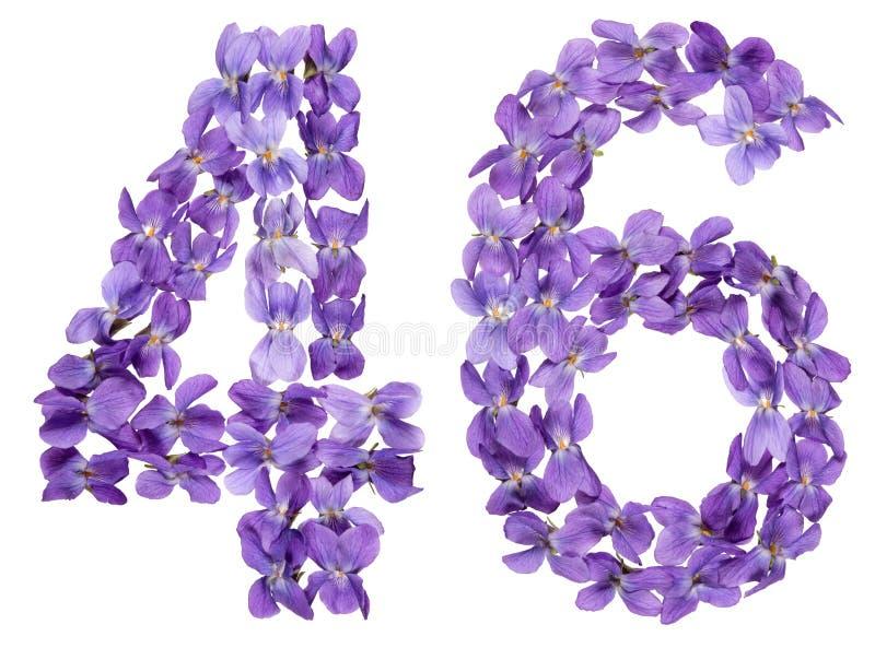 Numeral árabe 46, quarenta e seis, das flores da viola, isoladas sobre fotos de stock