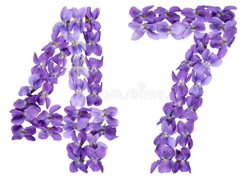 Numeral árabe 47, quarenta e sete, das flores da viola, isoladas imagem de stock