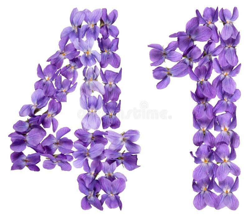 Numeral árabe 41, quarenta uns, das flores da viola, isoladas sobre fotos de stock