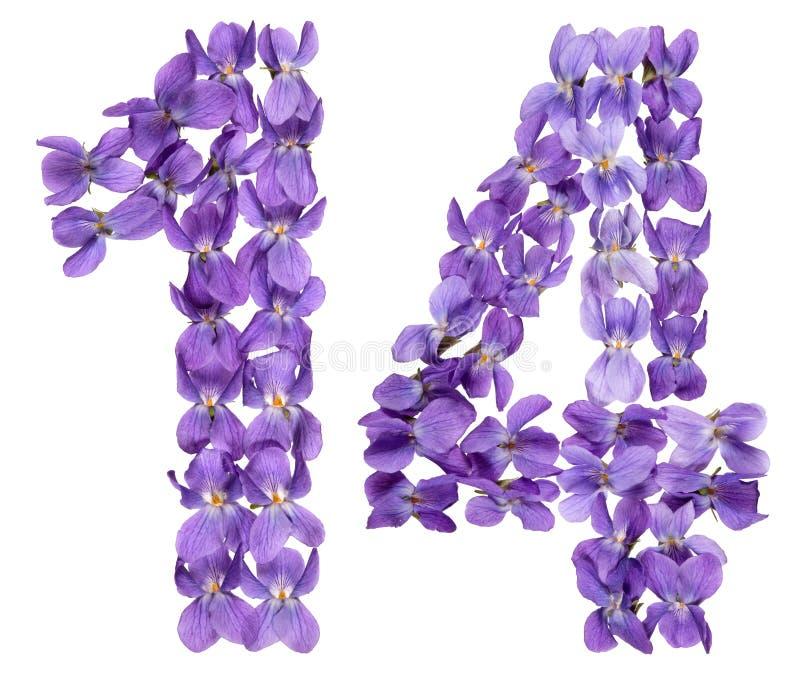 Numeral árabe 14, quatorze, das flores da viola, isoladas sobre imagens de stock royalty free