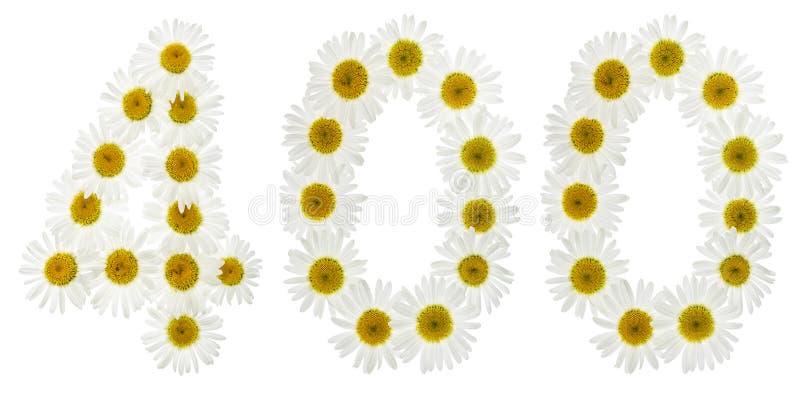 Numeral árabe 400, quatro cem, das flores brancas do chamomil imagem de stock royalty free