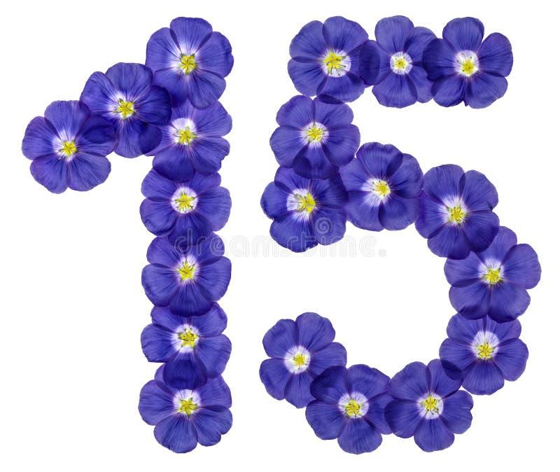 Numeral árabe 15, quinze, das flores azuis do linho, isoladas imagens de stock royalty free