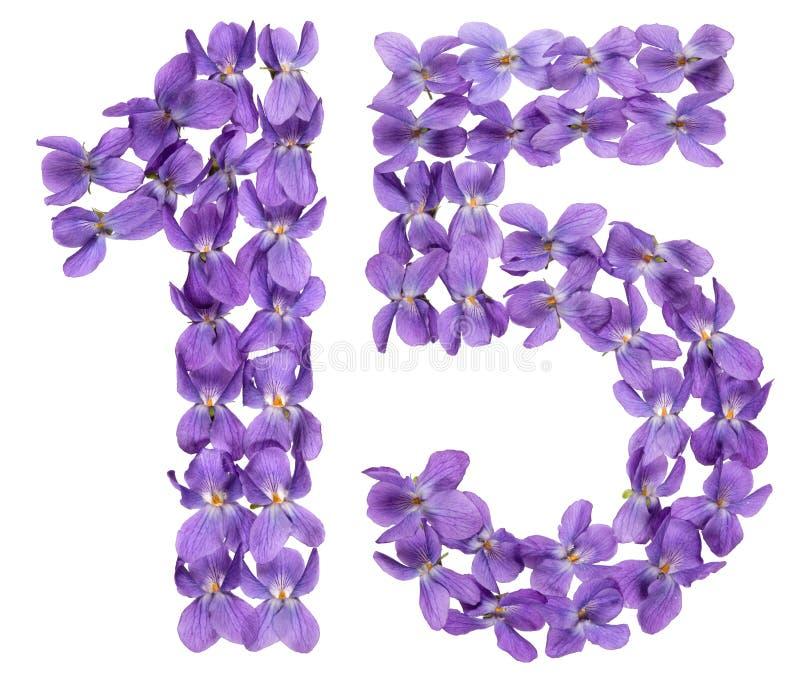 Numeral árabe 15, quinze, das flores da viola, isoladas em w foto de stock royalty free