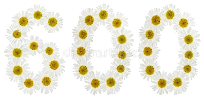 Numeral árabe 600, seis cem, das flores brancas da camomila fotos de stock royalty free