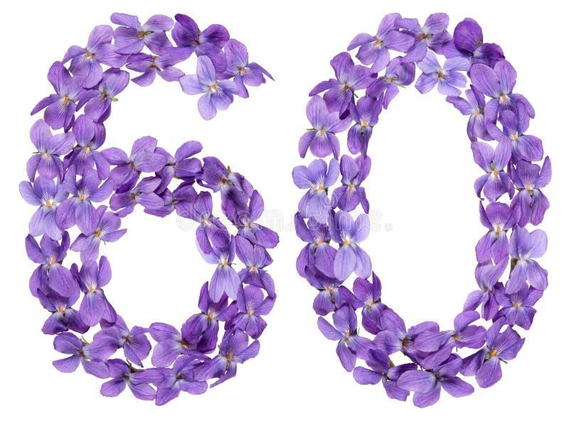 Numeral árabe 60, sessenta, das flores da viola, isoladas no whi imagens de stock royalty free