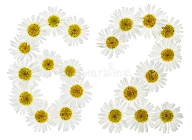 Numeral árabe 62, sessenta e dois, das flores brancas da camomila, i imagem de stock