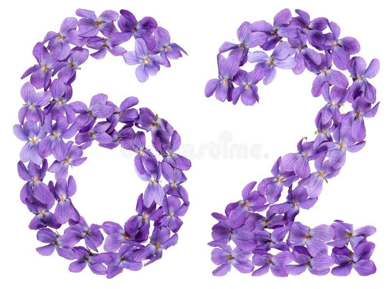 Numeral árabe 62, sessenta e dois, das flores da viola, isoladas sobre imagens de stock