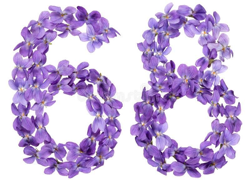 Numeral árabe 68, sessenta e oito, das flores da viola, isoladas imagem de stock