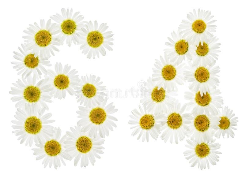 Numeral árabe 64, sessenta e quatro, das flores brancas da camomila, fotografia de stock royalty free