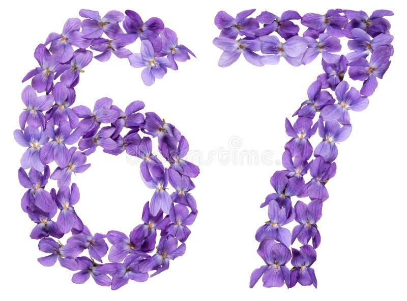 Numeral árabe 67, sessenta e sete, das flores da viola, isoladas imagens de stock royalty free