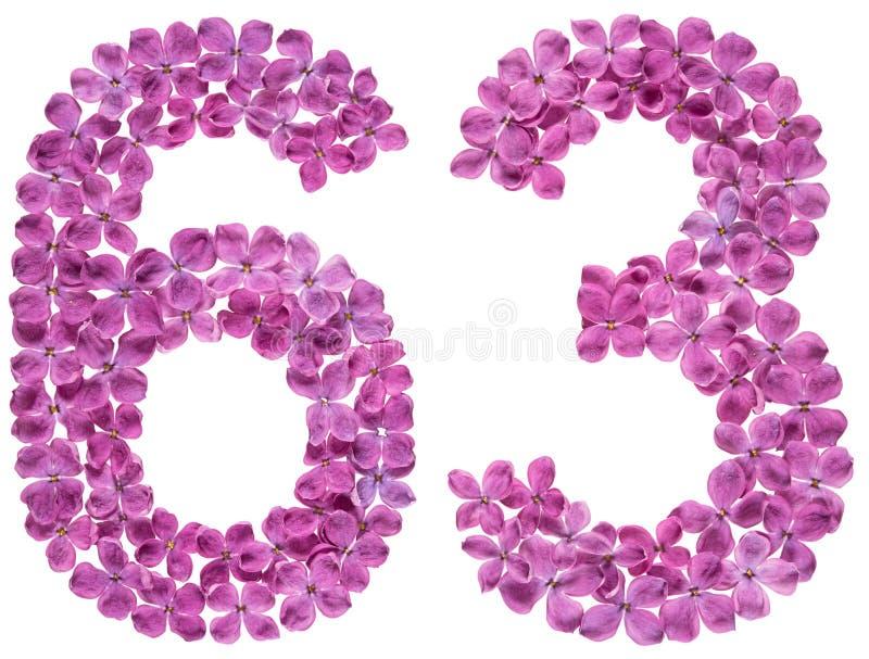 Numeral árabe 63, sessenta e três, das flores do lilás, isoladas imagem de stock