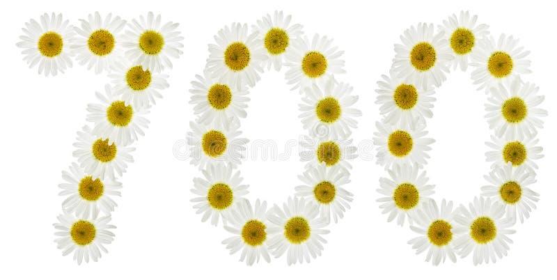Numeral árabe 700, sete cem, das flores brancas do chamomi foto de stock royalty free