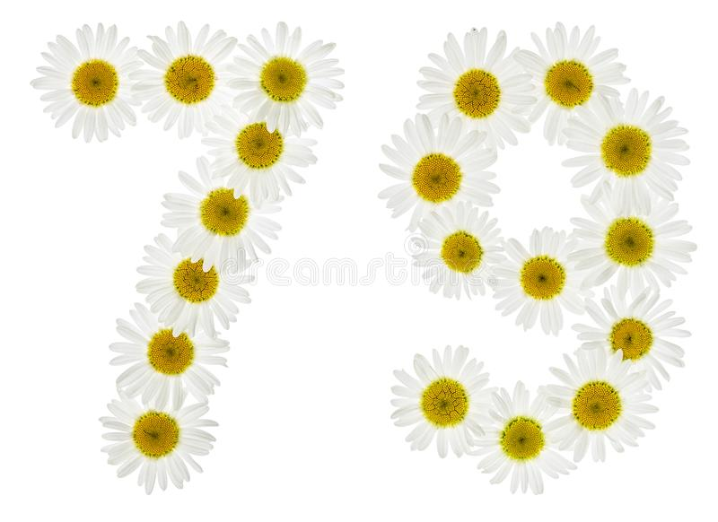 Numeral árabe 79, setenta nove, das flores brancas da camomila fotografia de stock