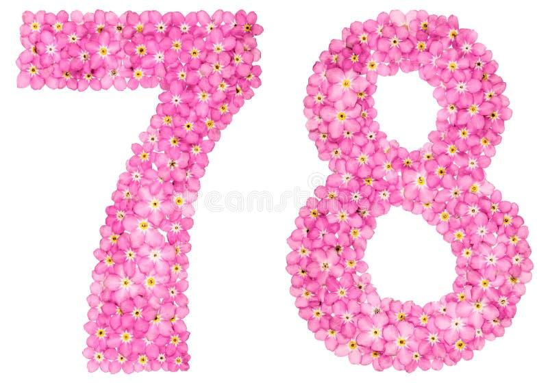 Numeral árabe 78, setenta oito, da flor cor-de-rosa do miosótis fotos de stock