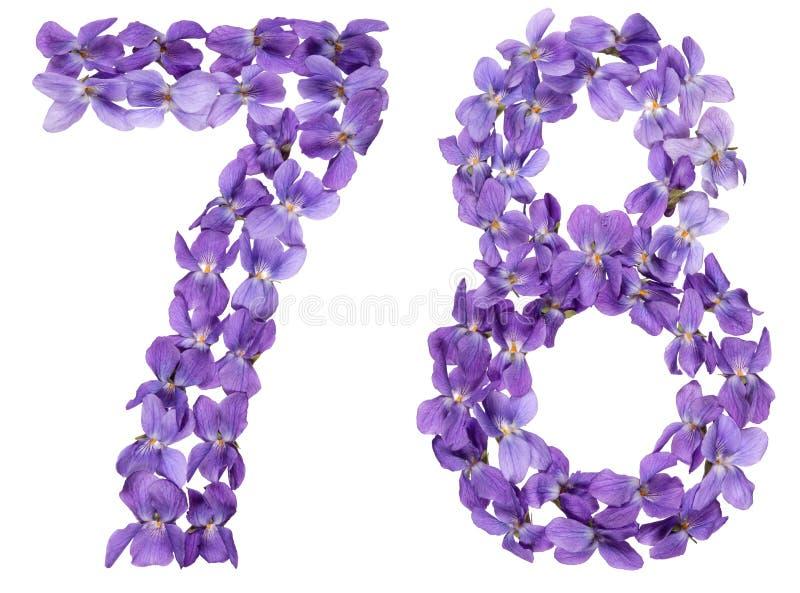 Numeral árabe 78, setenta oito, das flores da viola, isolado imagens de stock