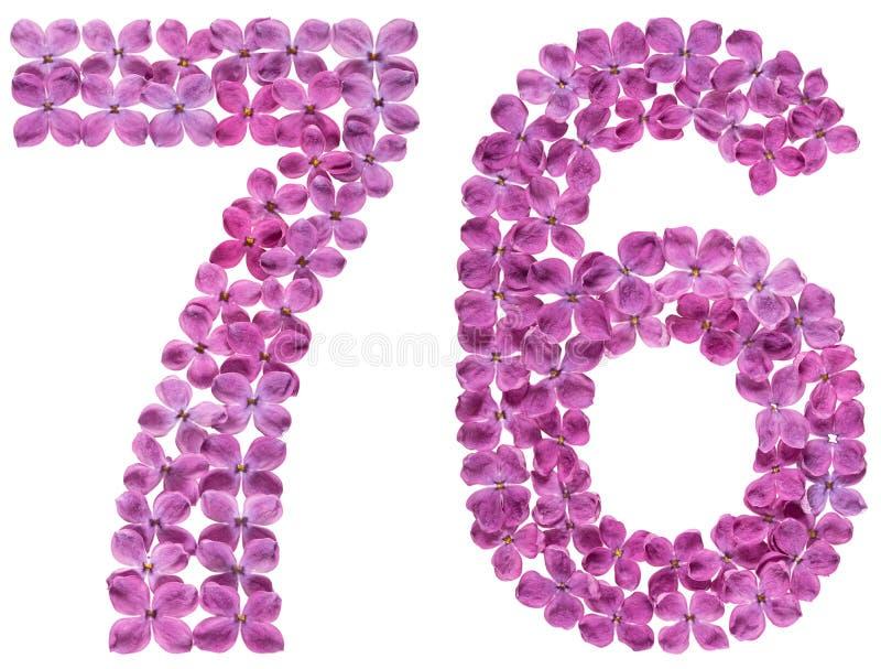Numeral árabe 76, setenta seis, das flores do lilás, isoladas imagem de stock