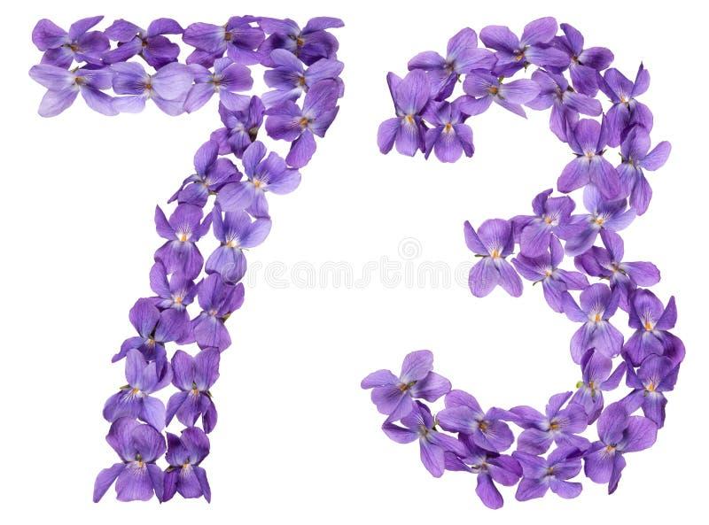 Numeral árabe 73, setenta três, das flores da viola, isolado fotos de stock