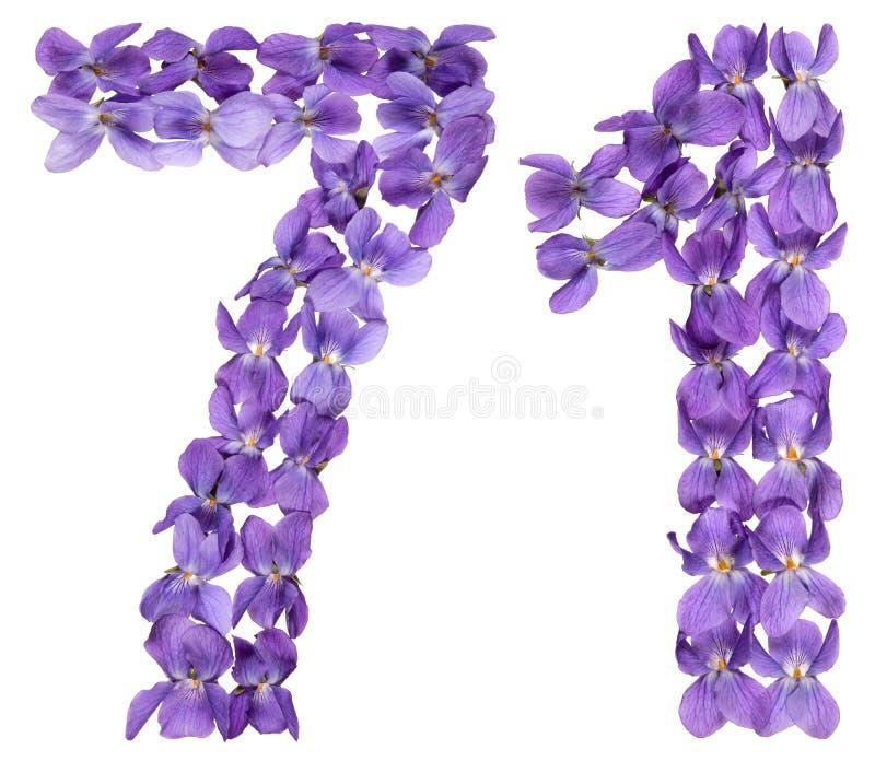Numeral árabe 71, setenta uns, das flores da viola, isoladas imagens de stock royalty free