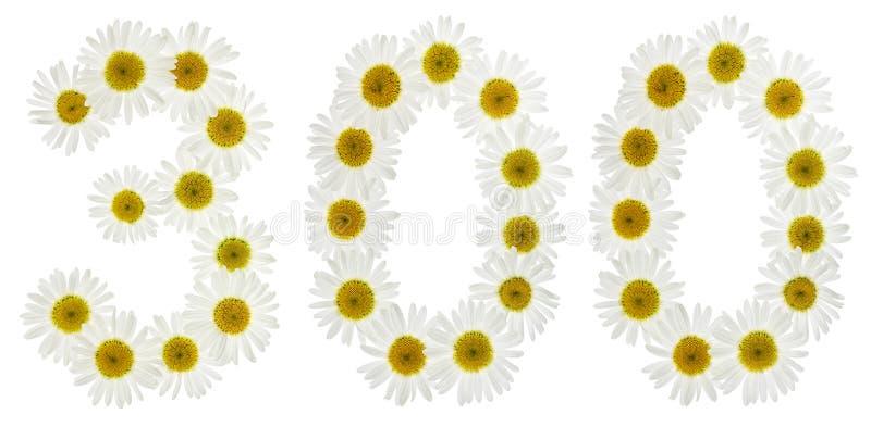 Numeral árabe 300, três cem, das flores brancas do chamomi fotografia de stock royalty free
