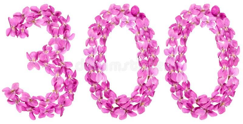 Numeral árabe 300, três cem, das flores da viola, isolat foto de stock