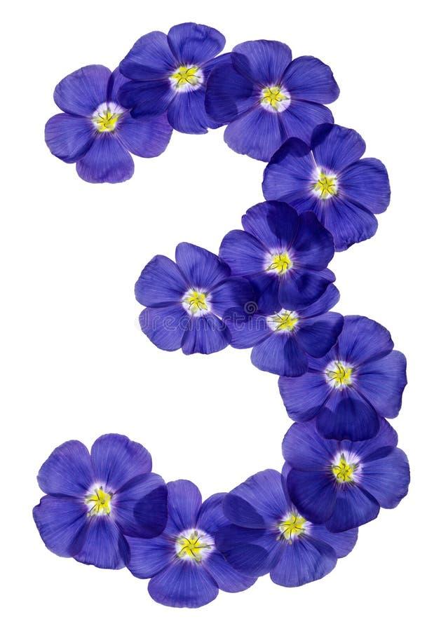 Numeral árabe 3, três, das flores azuis do linho, isoladas sobre imagens de stock