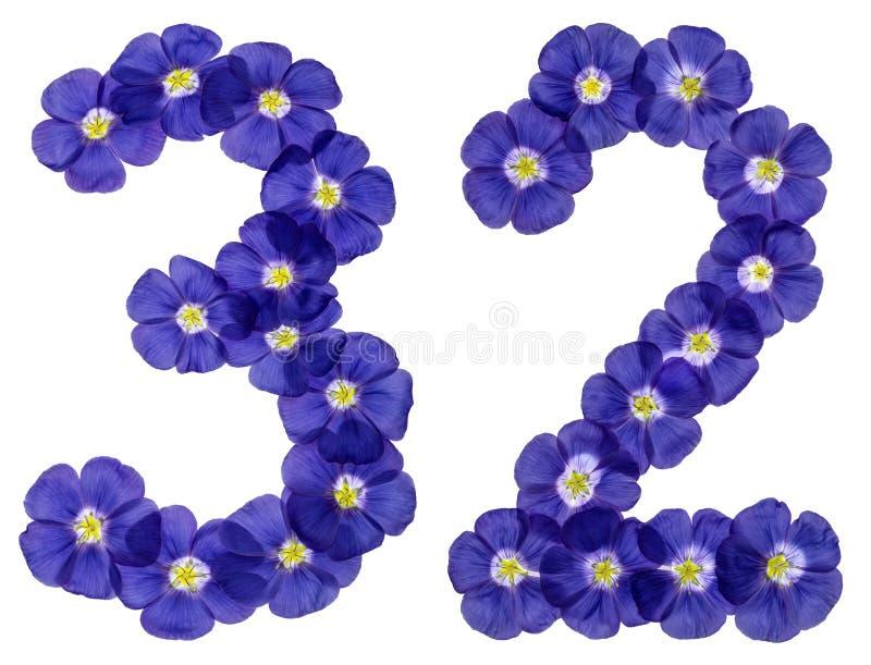 Numeral árabe 32, trinta e dois, das flores azuis do linho, isolat fotos de stock royalty free