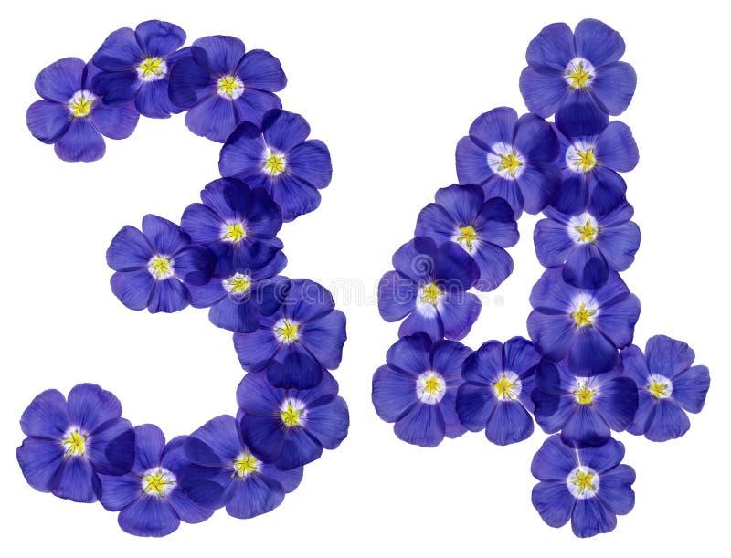 Numeral árabe 34, trinta e quatro, das flores azuis do linho, isola imagem de stock royalty free