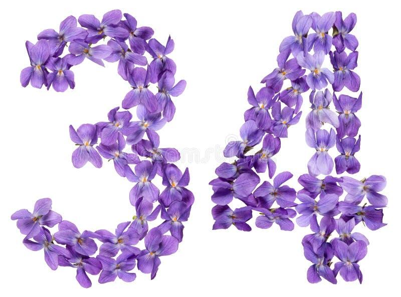 Numeral árabe 34, trinta e quatro, das flores da viola, isoladas foto de stock