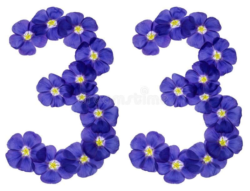 Numeral árabe 33, trinta e três, das flores azuis do linho, isolador fotografia de stock
