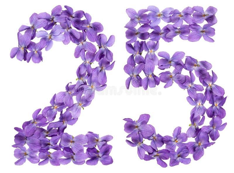Numeral árabe 25, vinte cinco, das flores da viola, isoladas imagem de stock royalty free