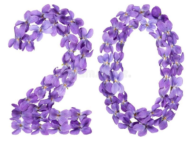 Numeral árabe 20, vinte, das flores da viola, isoladas no wh imagem de stock