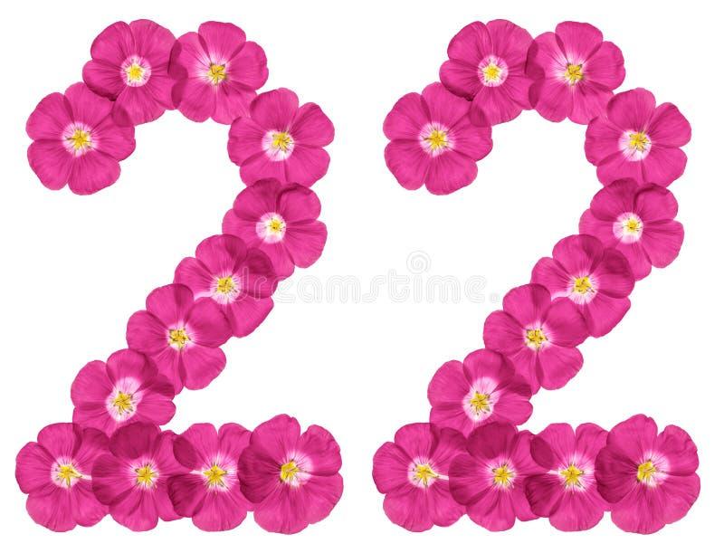 Numeral árabe 22, vinte e dois, das flores cor-de-rosa do linho, isoladas no fundo branco imagens de stock royalty free
