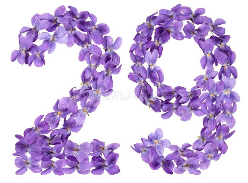Numeral árabe 29, vinte e nove, das flores da viola, isoladas imagens de stock royalty free