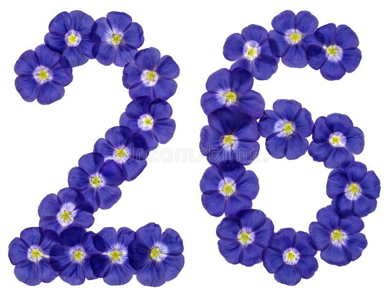 Numeral árabe 26, vinte e seis, das flores azuis do linho, isolat fotos de stock royalty free