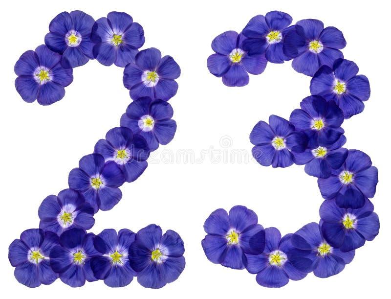 Numeral árabe 23, vinte e três, das flores azuis do linho, isolador fotografia de stock royalty free