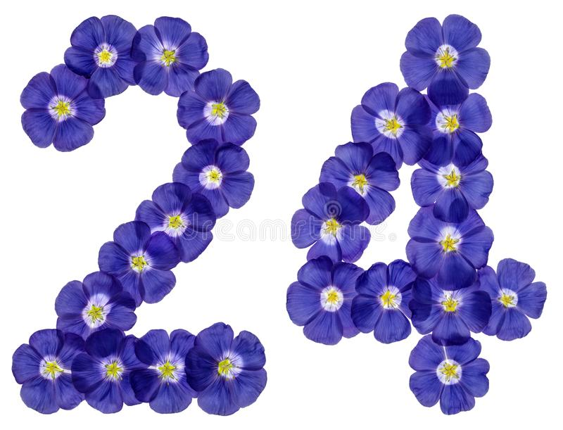 Numeral árabe 24, vinte quatro, das flores azuis do linho, isola foto de stock