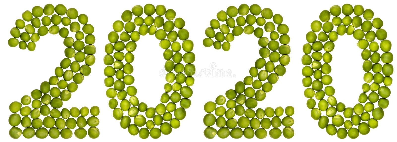 Numeral 2020 das ervilhas verdes, isoladas no fundo branco ilustração royalty free