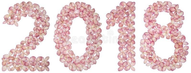 Numeral 2018 das flores da hortênsia, isoladas no fundo branco ilustração do vetor