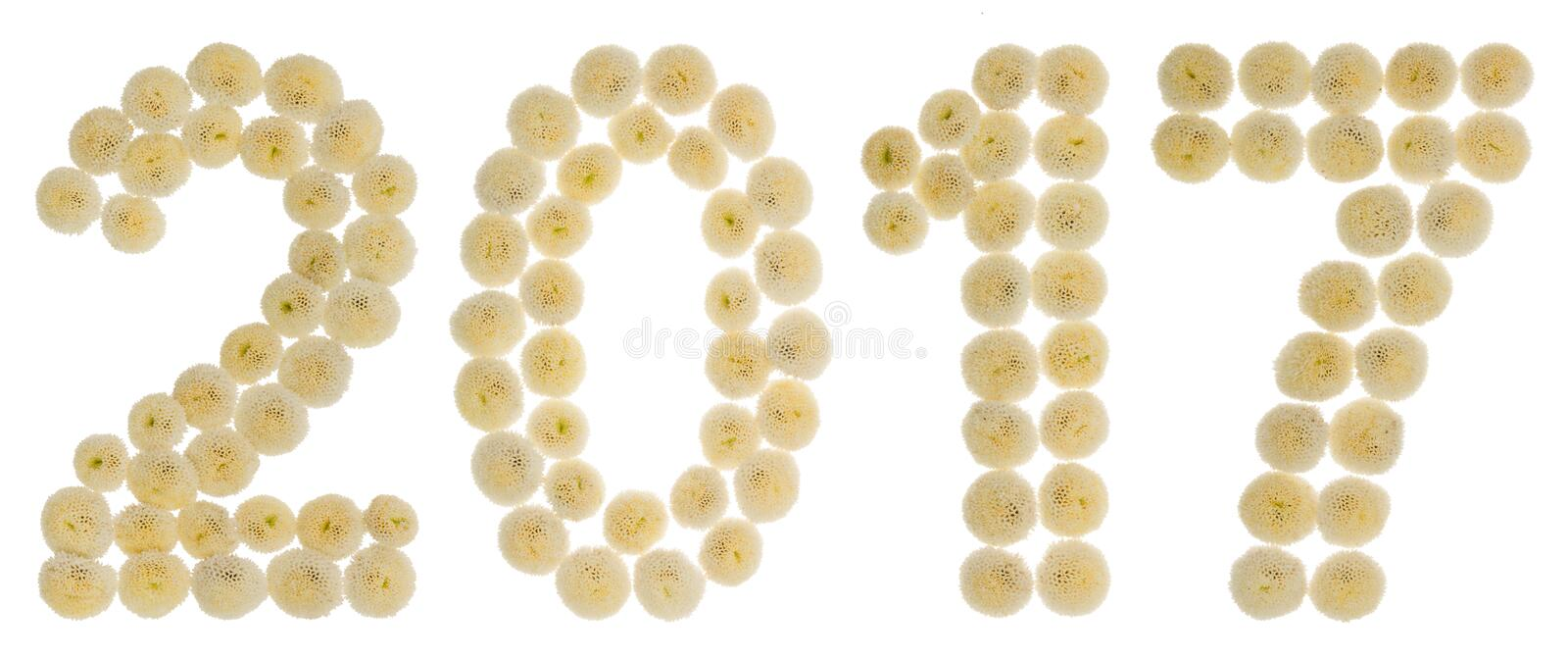 Numeral 2017 das flores de creme do crisântemo, isoladas no wh fotografia de stock royalty free