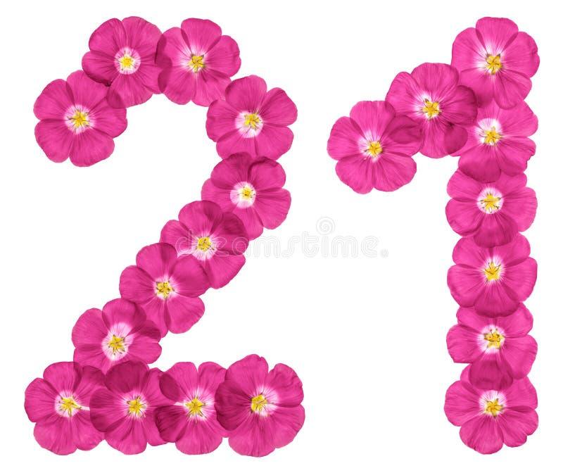 Numero arabo 21, venti uno, venti, dai fiori rosa di lino, isolati su fondo bianco royalty illustrazione gratis