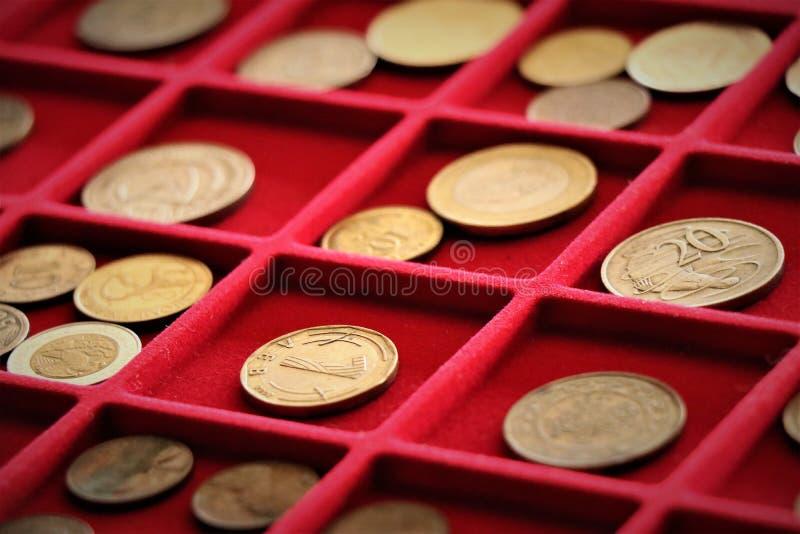 Numismatic работа Собрание монеток, вклад стоковые изображения rf