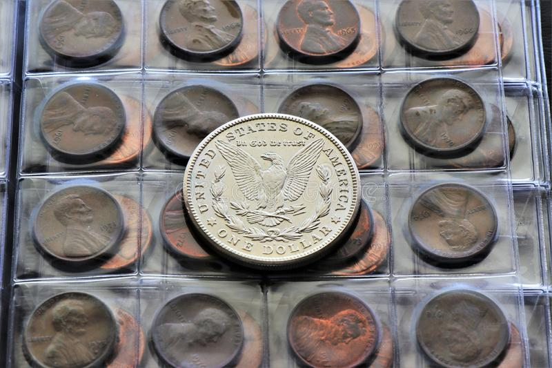 Close up of a Morgan Dollar silver coin. Ancient United States Currency. Numismatic job. World coins collection, investment. Accessories are visible in the stock photos