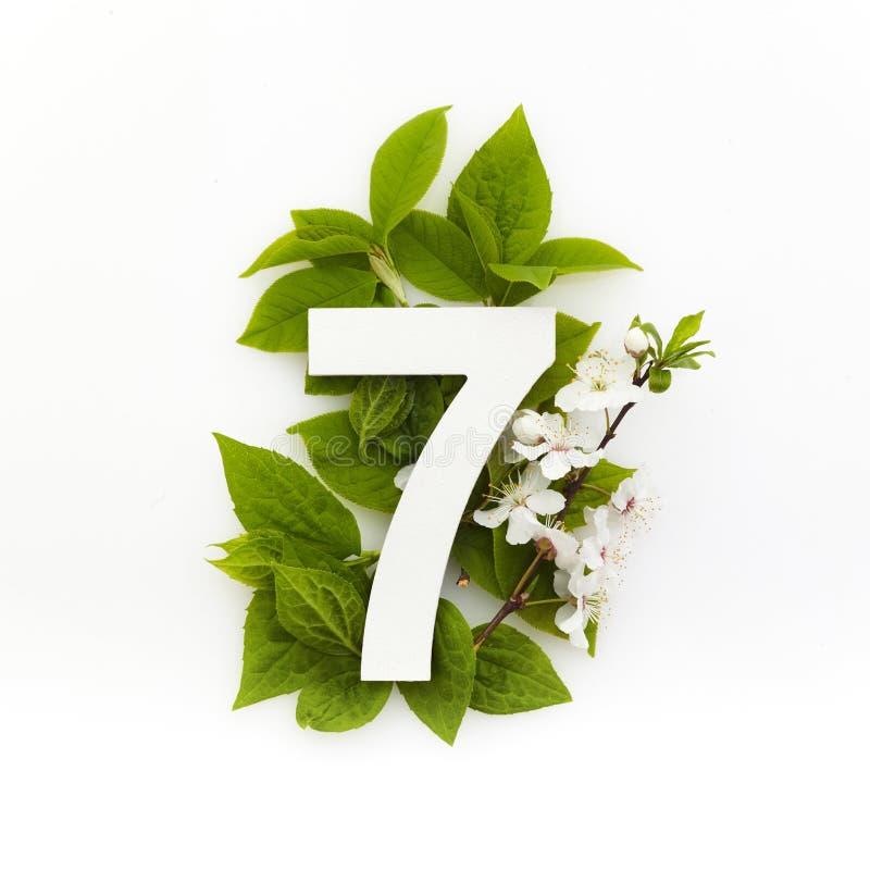 Nummer sju med gröna blad Minimalt sommarkoncept Plattlägg arkivbild
