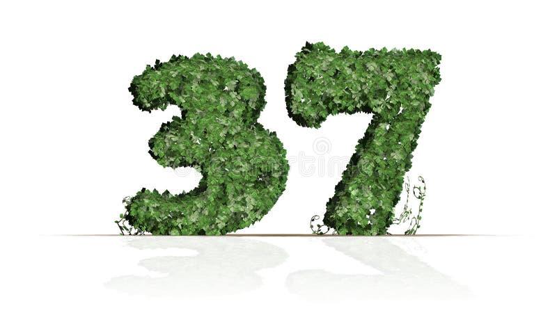 Nummer 37 van groene klimopbladeren dat wordt gecreeerd vector illustratie