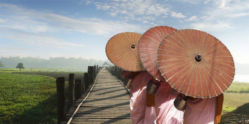Nun with pink robe and umbrella. Walking on the U bain bridge at Mandalay,Myanmar stock image